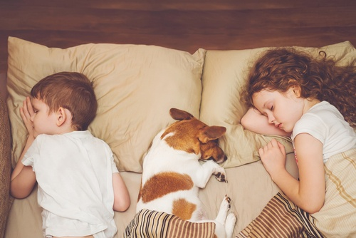 A bond with a pet can help children learn about building trust and friendship.