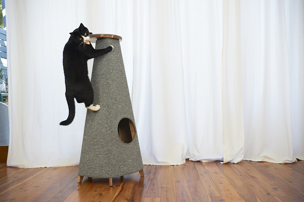 The Cone Scratcher is our #1 favourite cat gift this winter!
