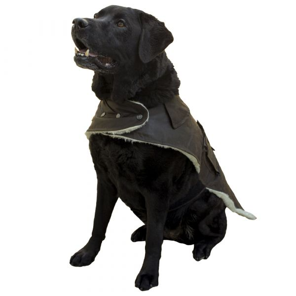 Try this wool & oilskin doggy jacket.