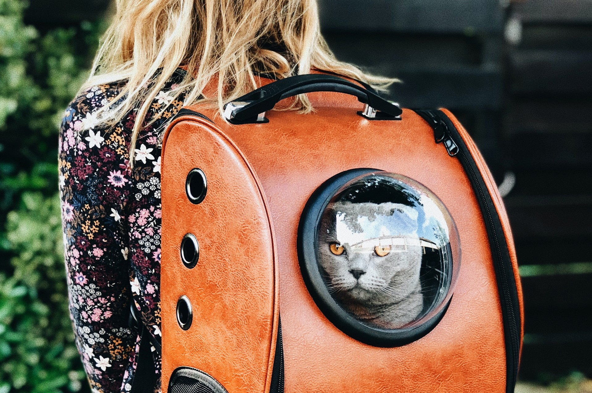 A woman travels with her cat in a pet carrier