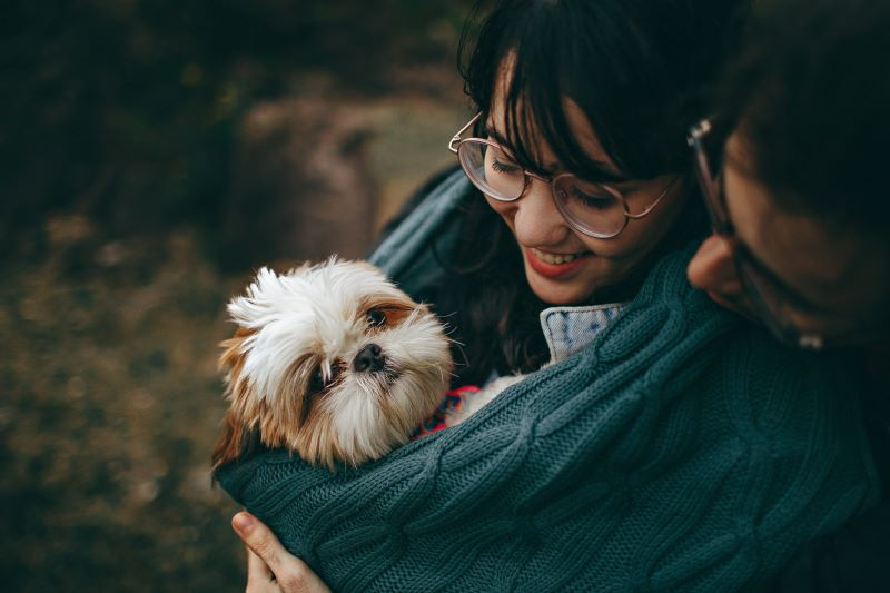 a couple pet their dog after signing a pet prenup
